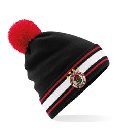 Stadium Bobble Hat